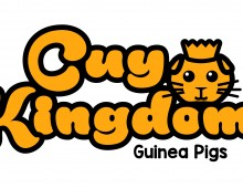 Cuy Kingdom